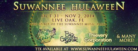 2014 Suwannee Hulaween